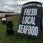 8 welcoming Greater Speyside pubs and restaurants your dog will love too!